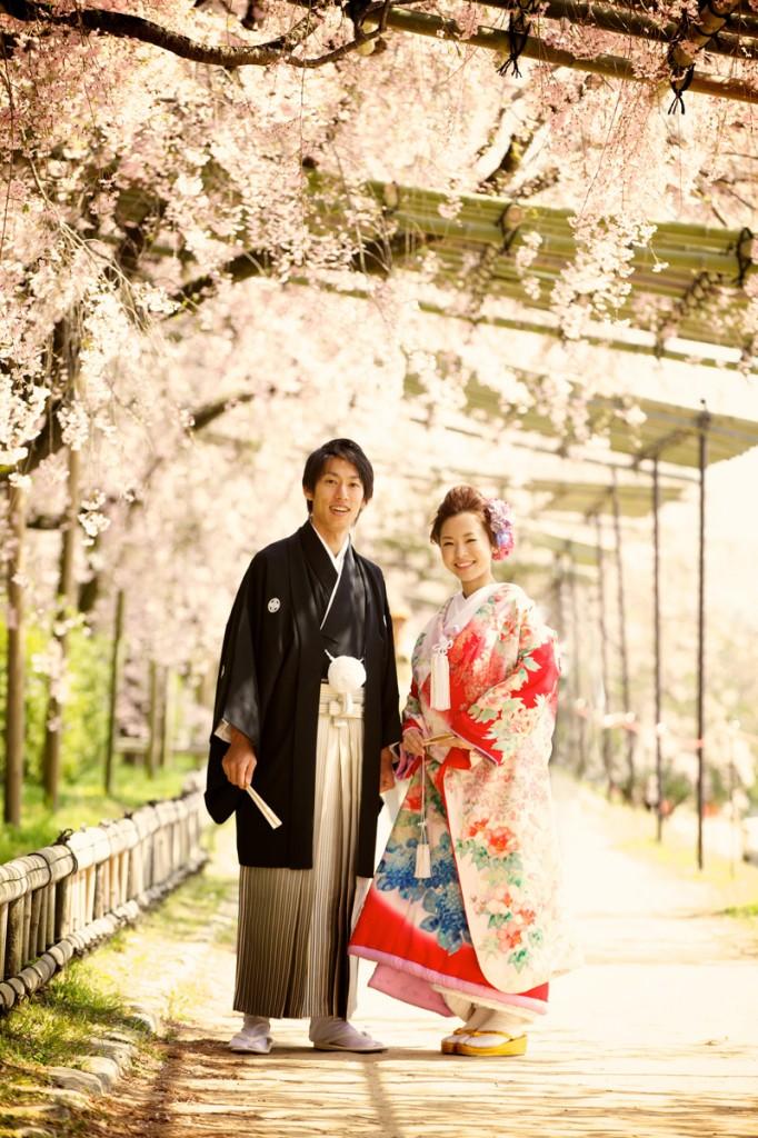 ロケフォト(桜)縦